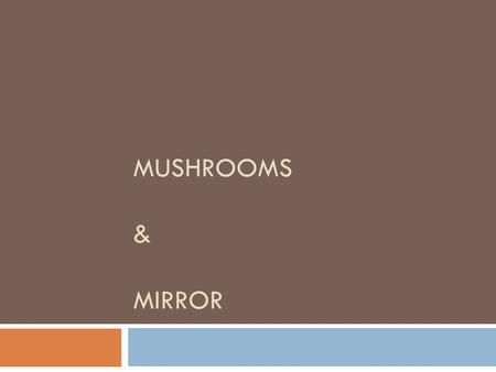 Mushrooms & Mirror.