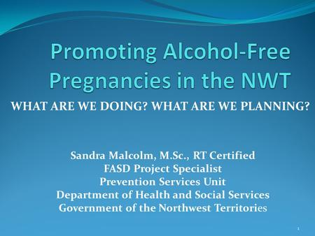 WHAT ARE WE DOING? WHAT ARE WE PLANNING? 1 Sandra Malcolm, M.Sc., RT Certified FASD Project Specialist Prevention Services Unit Department of Health and.