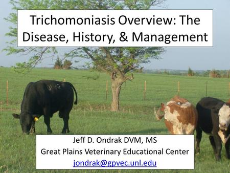 Trichomoniasis Overview: The Disease, History, & Management Jeff D. Ondrak DVM, MS Great Plains Veterinary Educational Center
