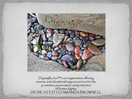 DignityRocks!™ is an organization offering seminar and educational support services for the promotion, preservation, and protection of human dignity. DEDICATED.