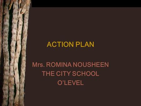 ACTION PLAN Mrs. ROMINA NOUSHEEN THE CITY SCHOOL O'LEVEL.