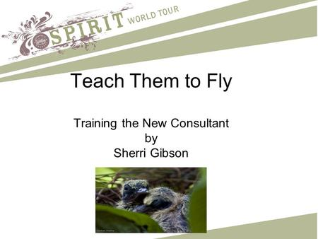 Teach Them to Fly Training the New Consultant by Sherri Gibson.