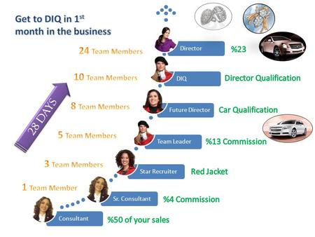 28 DAYS. Sales Director You reach DIQ (Director in Qualification) level when you have 10 personal team members. Sales Directorship is accomplished when.