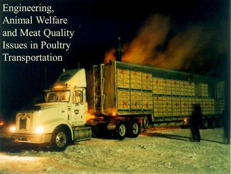 Engineering, Animal Welfare and Meat Quality Issues in Poultry Transportation.