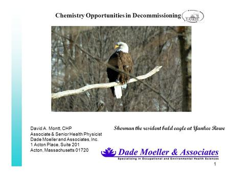 1 Chemistry Opportunities in Decommissioning David A. Montt, CHP Sherman the resident bald eagle at Yankee Rowe Associate & Senior Health Physicist Dade.