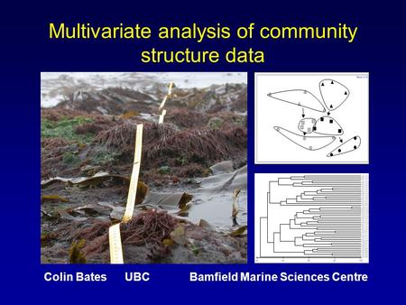 Multivariate analysis of community structure data Colin Bates UBC Bamfield Marine Sciences Centre.