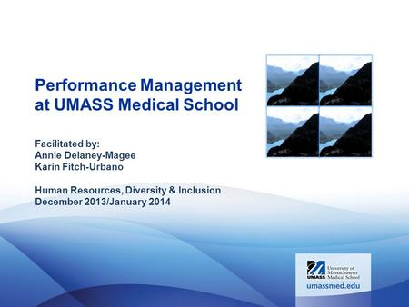 Performance Management at UMASS Medical School Facilitated by: Annie Delaney-Magee Karin Fitch-Urbano Human Resources, Diversity & Inclusion December 2013/January.