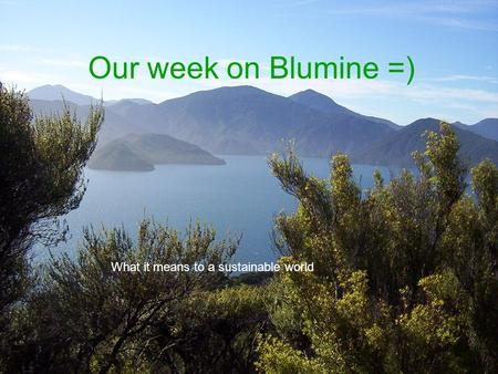 Our week on Blumine =) What it means to a sustainable world.