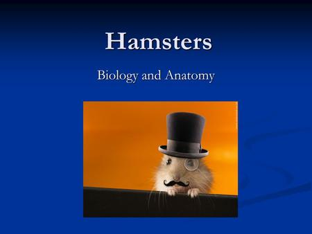 Hamsters Biology and Anatomy.