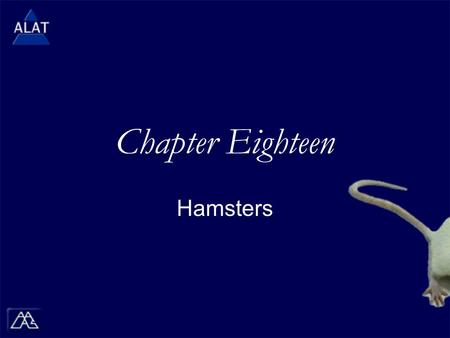 "Chapter Eighteen Hamsters.  If viewing this in PowerPoint, use the icon to run the show (bottom left of screen).  Mac users go to ""Slide Show > View."