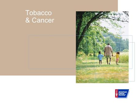 Tobacco & Cancer. Tobacco Use And Cancer Tobacco use, the most preventable cause of death in our society, accounts for at least 30% of all cancer deaths.