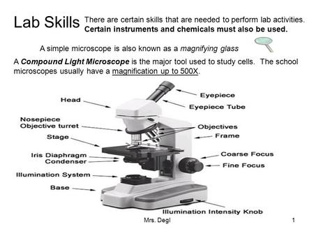 Lab Skills There are certain skills that are needed to perform lab activities. Certain instruments and chemicals must also be used. A simple microscope.