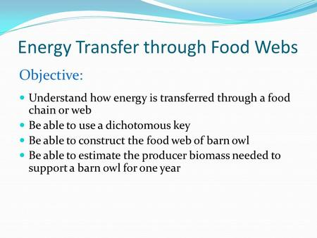 Energy Transfer through Food Webs Objective: Understand how energy is transferred through a food chain or web Be able to use a dichotomous key Be able.