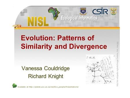 Available at  Evolution: Patterns of Similarity and Divergence Vanessa Couldridge Richard Knight.