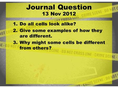 1.Do all cells look alike? 2.Give some examples of how they are different. 3.Why might some cells be different from others? Journal Question 13 Nov 2012.