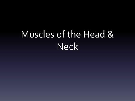 Muscles of the Head & Neck. Frontalis: covers the frontal bone- raises the eyebrows and wrinkles the forehead.
