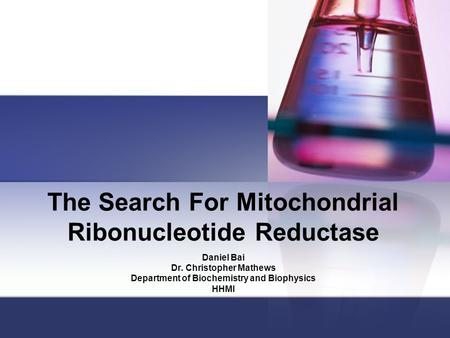 The Search For Mitochondrial Ribonucleotide Reductase Daniel Bai Dr. Christopher Mathews Department of Biochemistry and Biophysics HHMI.