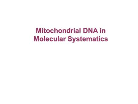 Mitochondrial DNA in Molecular Systematics. -organelle found in eukaryotic cells -cellular respiration – ATP production Mitochondria.