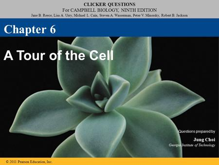 robotics chapter 6 review questions Quiz for lessons 96-97: p664: mixed review: p667: chapter review: p669: chapter test: p673: cumulative review: p678: chapter 10 counting methods and .