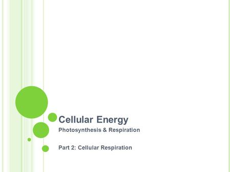 Cellular Energy Photosynthesis & Respiration Part 2: Cellular Respiration.