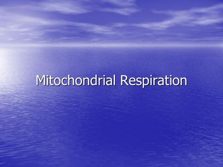 Mitochondrial Respiration. Respiration Glycolysis Glycolysis Citric acid cycle/kreb's cycle Citric acid cycle/kreb's cycle.