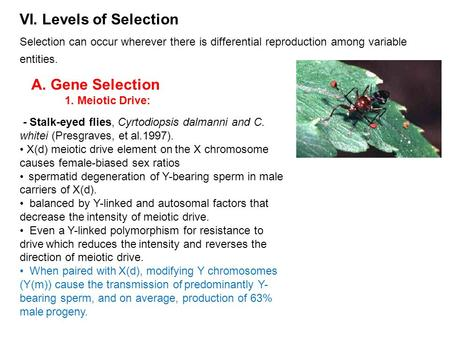 VI. Levels of Selection Selection can occur wherever there is differential reproduction among variable entities. A. Gene Selection 1. Meiotic Drive: -
