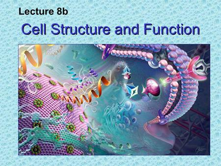 Cell Structure and Function Lecture 8b. The Cell Theory All living things are composed of cells. All cells are derived from pre- existing cells, i.e.,