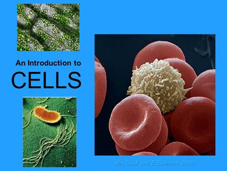 An Introduction to CELLS Jen Cook and E.Coleman 2008.