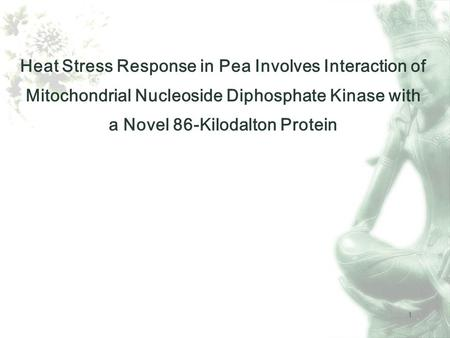 1 Heat Stress Response in Pea Involves Interaction of Mitochondrial Nucleoside Diphosphate Kinase with a Novel 86-Kilodalton Protein.