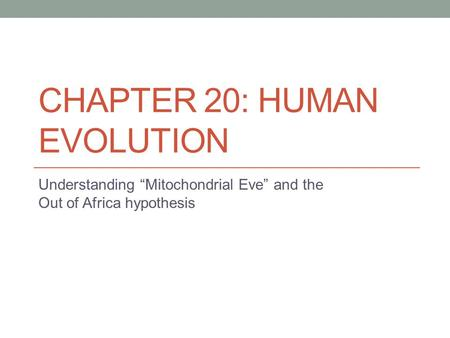 "CHAPTER 20: HUMAN EVOLUTION Understanding ""Mitochondrial Eve"" and the Out of Africa hypothesis."