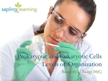 Prokaryotic and Eukaryotic Cells Levels of Organization Biology 4(A), Biology 10(C)