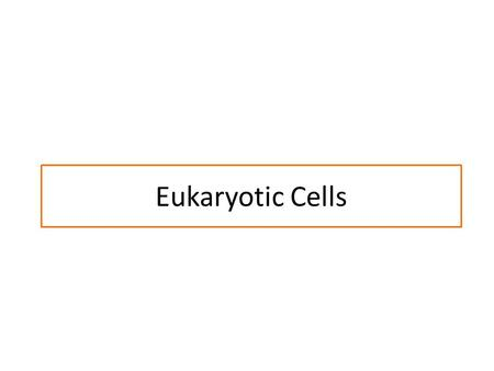 Eukaryotic Cells. Us vs. Them -Eukaryotes and Prokaryotes.