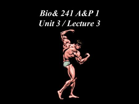 Bio& 241 A&P 1 Unit 3 / Lecture 3. Actions of Antagonistic Muscles Prime mover Antagonist.