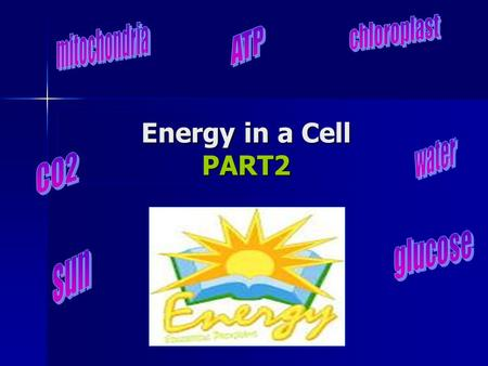 Energy in a Cell PART2. Predict: Why do we breathe?! Why do we breathe?! Why do we eat what plants produce? Why do we eat what plants produce?