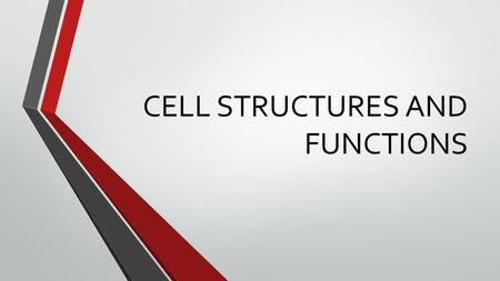 CELL STRUCTURES AND FUNCTIONS. 2 Cell Theory 1. All organisms are composed of cells. 2. Cells are the smallest living things. 3. Cells arise only from.