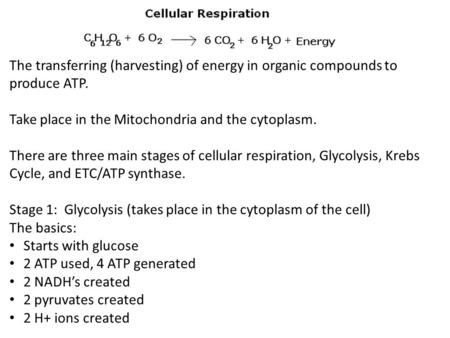 The transferring (harvesting) of energy in organic compounds to produce ATP. Take place in the Mitochondria and the cytoplasm. There are three main stages.