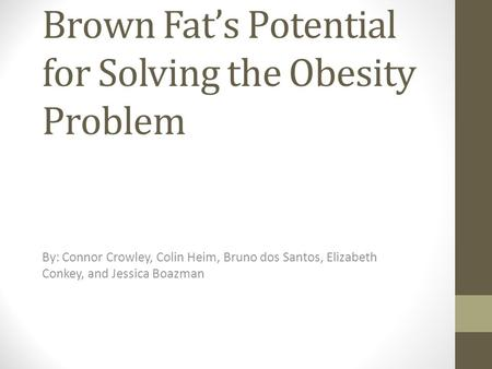 Brown Fat's Potential for Solving the Obesity Problem By: Connor Crowley, Colin Heim, Bruno dos Santos, Elizabeth Conkey, and Jessica Boazman.