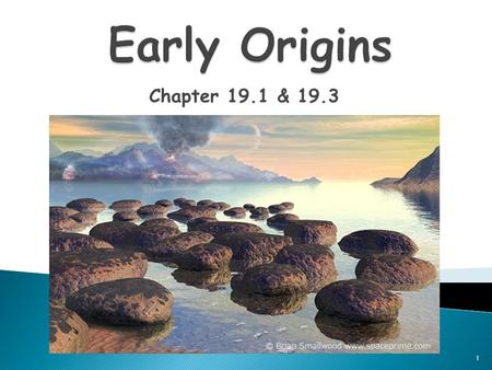Early Origins Chapter 19.1 & 19.3.
