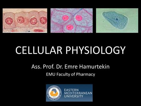 CELLULAR PHYSIOLOGY Ass. Prof. Dr. Emre Hamurtekin EMU Faculty of Pharmacy.