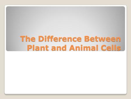 The Difference Between Plant and Animal Cells Animal Cells Can not make their own food so they have to eat food Do not go through photosynthesis Animal.