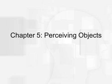 Chapter 5: Perceiving Objects