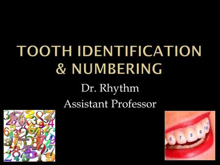 Dr. Rhythm Assistant Professor. The Dental Arch  The human dentition:  20 primary & 32 permanent teeth.