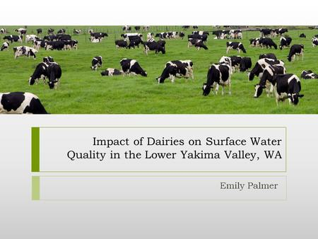 Impact of Dairies on Surface Water Quality in the Lower Yakima Valley, WA Emily Palmer.