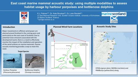 East coast marine mammal acoustic study: using multiple modalities to assess habitat usage by harbour porpoises and bottlenose dolphins K.J. Palmer (1)*,