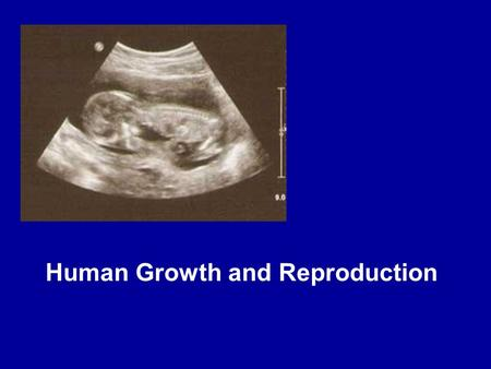 Human Growth and Reproduction. Sperm reach ovum and cluster around it.