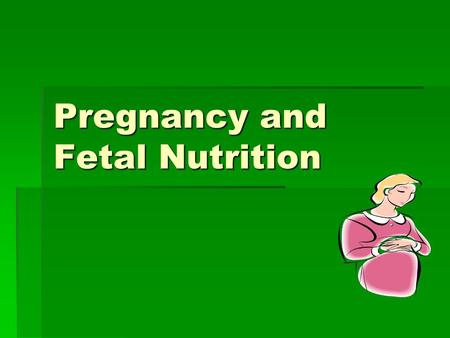 "Pregnancy and Fetal Nutrition. Placenta Development  Develops in early days of pregnancy  Amniotic sac- ""bag of water""  Umbilical cord- route of nourishment."