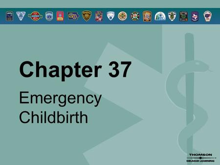 Chapter 37 Emergency Childbirth. © 2005 by Thomson Delmar Learning,a part of The Thomson Corporation. All Rights Reserved 2 Overview  Anatomy Review.