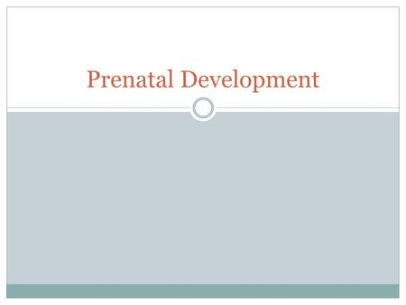 Prenatal Development. HOW A BABY I BORN – IN THE EYES OF A CHILD.