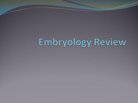 Embryology Review.
