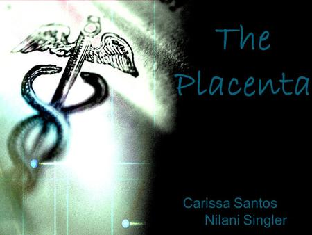 Carissa Santos Nilani Singler The Placenta Description of the Placenta The placenta is a multipurpose organ! It is involved in nutrient absorption, waste.